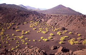 Semi-desert at the south of La Palma island