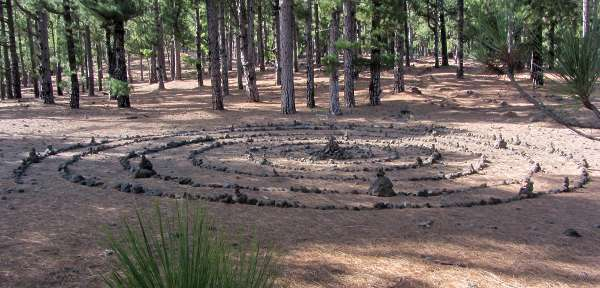 A spiral of stones on the pine forest floor, Pico de la Nieve, La Palma island