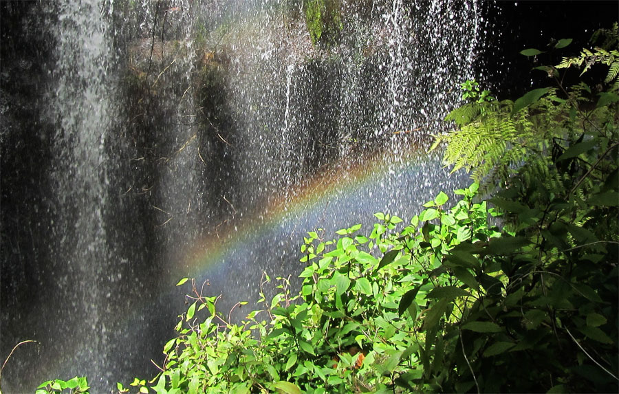 Rainbow in the waterfall in Los Tilos forest, San Andes y Sauces, La Palma