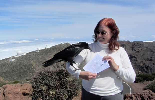 Sheila holding Carmelo the raven looking at her book 'The Seer's Stone' with the telescopes of teh Roque de Los Muchachos in the background