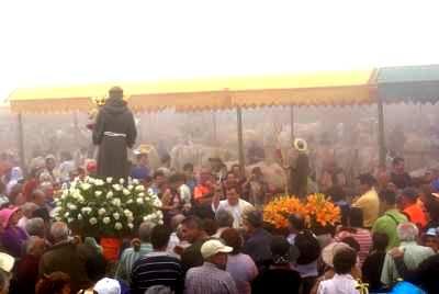 The traditional blessing for the animals, San Antonio del Monte fair, Garafía