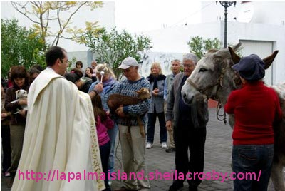 Fiesta of St Anthony the Abbot, Fuencaliente, La Palma, Canary Islands