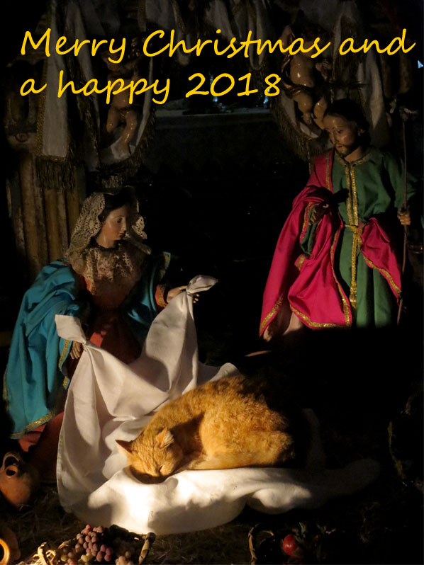 The nativity scene at Las Nieves church, La Palma island, with a kitten sleeping in the manger
