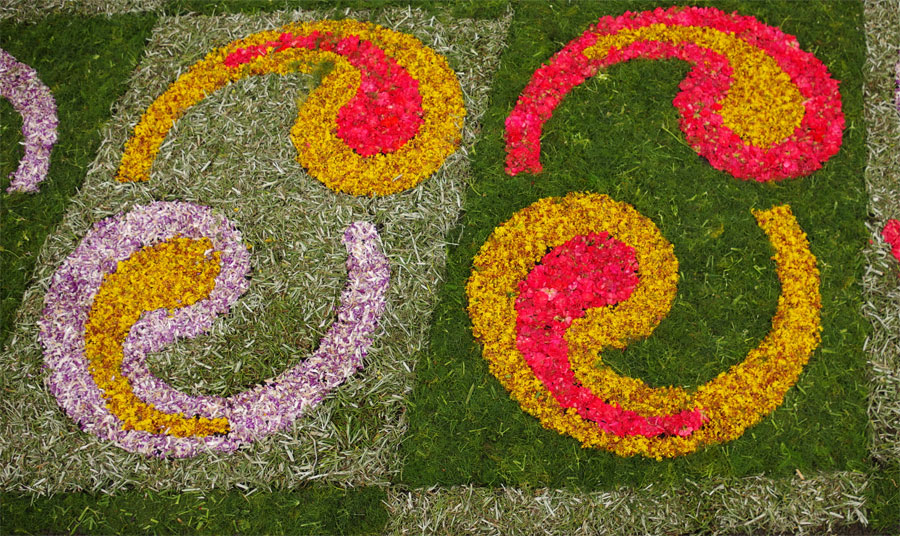 Detail of a Corpus Christi flower carpet, Mazo, La Palma island