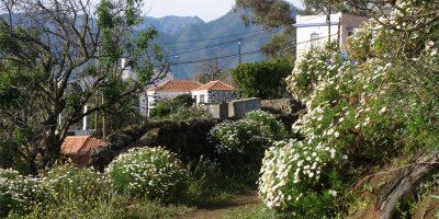The GR130 footpath from Jedey to San Nicolas, Los Llanos de Aridane